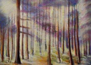 DSC_0033 Pastel sous bois